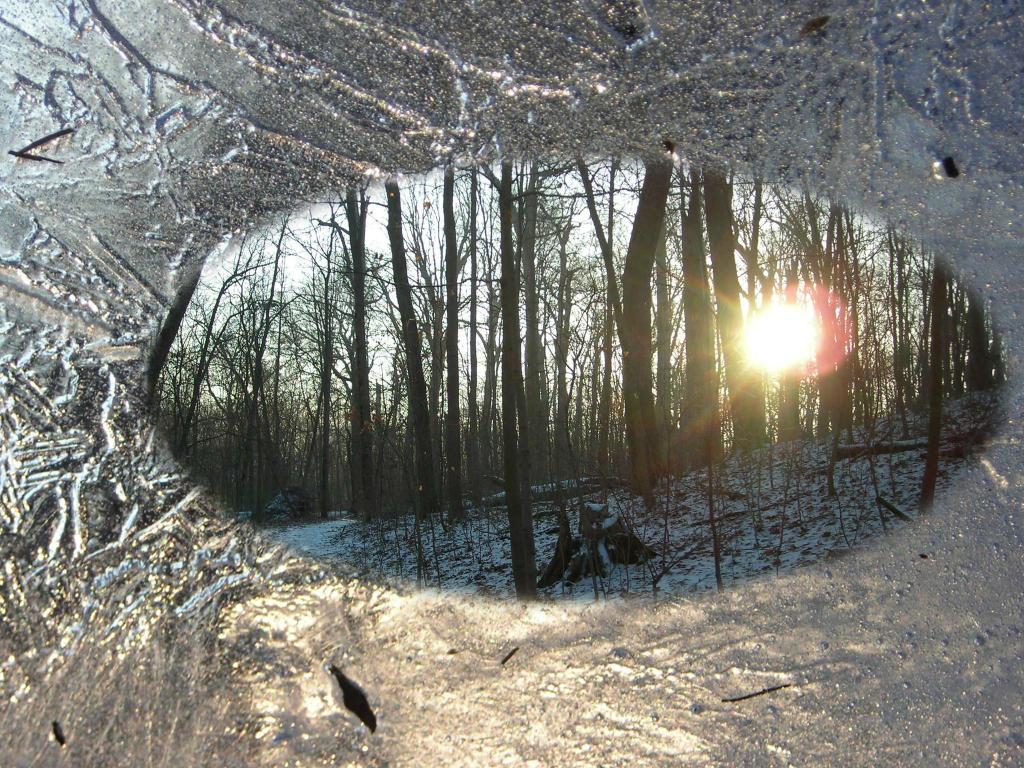 ice and sunrays